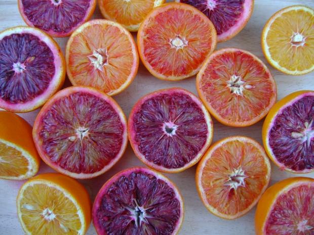 Blood oranges madebyjayne.com